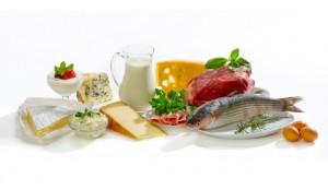 Основные белковые продукты